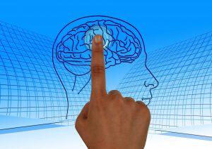 פסיכופיזיולוגיה בשירות בדיקת הפוליגרף
