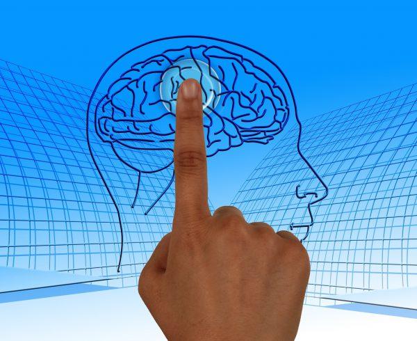 פסיכופיזיולוגיה כאבן היסוד של בדיקת פוליגרף